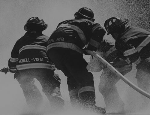 Mađarski vatrogasci na razmjeni u JVP